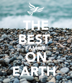 Poster: THE BEST  FAMILY  ON EARTH