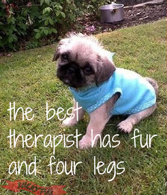 Poster:    the best  therapist has fur and four legs