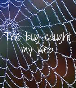 Poster: The bug caught  my web...