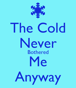 Poster: The Cold Never Bothered Me Anyway