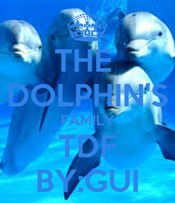 Poster: THE  DOLPHIN'S FAMILY TDF BY:GUI