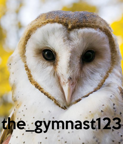 Poster:     the_gymnast123