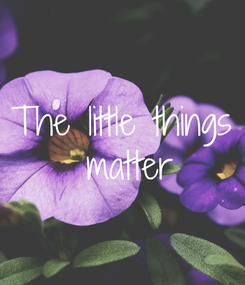 Poster: The little things  matter