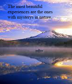 Poster: The most beautiful 
