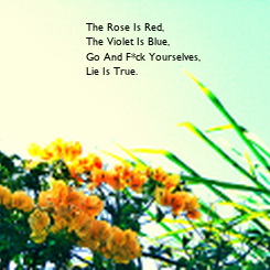 Poster: The Rose Is Red, The Violet Is Blue, Go And F*ck Yourselves, Lie Is True.
