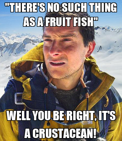 """Poster: """"THERE'S NO SUCH THING AS A FRUIT FISH"""" WELL YOU BE RIGHT, IT'S A CRUSTACEAN!"""