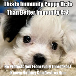 Poster: This Is Immunity Puppy He Is Than Better Immunity Cat He Protects you From Every Threat Post Known Nothing Can Destroy Him