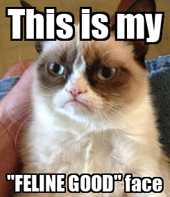 """Poster: This is my """"FELINE GOOD"""" face"""