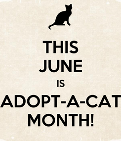 Poster: THIS JUNE IS ADOPT-A-CAT MONTH!