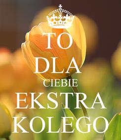 Poster: TO  DLA  CIEBIE EKSTRA KOLEGO