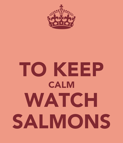 Poster:  TO KEEP CALM WATCH SALMONS