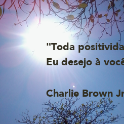 """Poster: """"Toda positividade Eu desejo à você...""""  Charlie Brown Jr."""