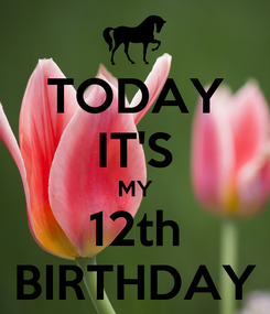 Poster: TODAY IT'S MY 12th BIRTHDAY