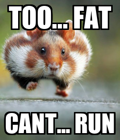 Poster: TOO... FAT CANT... RUN