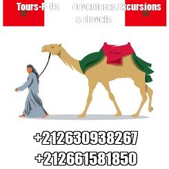 Poster:        Tours-R-Us         Adventures Excursions