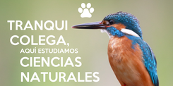 Poster: TRANQUI                           COLEGA,                          AQUÍ ESTUDIAMOS                                            CIENCIAS                    NATURALES