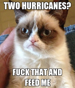 Poster: TWO HURRICANES? FUCK THAT AND FEED ME