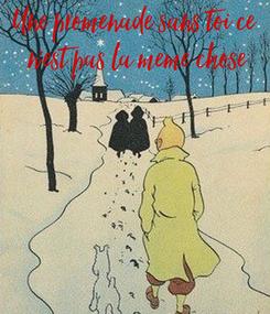 Poster: Une promenade sans toi ce  n'est pas la meme chose