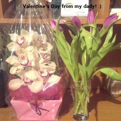 Poster: Valentine's Day from my dady! :)