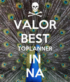 Poster: VALOR BEST TOPLANNER IN NA