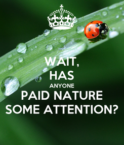 Poster: WAIT, HAS ANYONE PAID NATURE SOME ATTENTION?