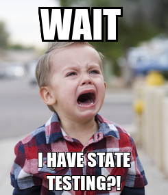 Poster: WAIT  I HAVE STATE TESTING?!