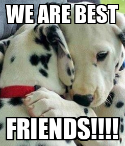 Poster: WE ARE BEST FRIENDS!!!!