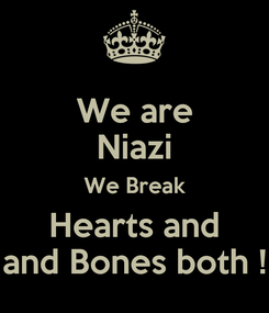 Poster: We are Niazi We Break Hearts and and Bones both !