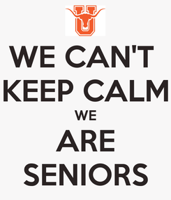 Poster: WE CAN'T  KEEP CALM WE ARE SENIORS