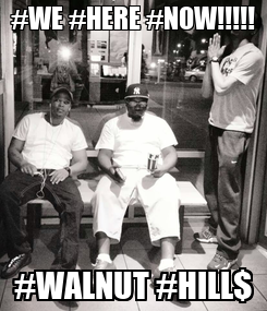Poster: #WE #HERE #NOW!!!!! #WALNUT #HILL$