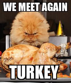 Poster: WE MEET AGAIN TURKEY