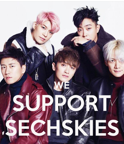 Poster:   WE SUPPORT SECHSKIES