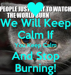 Poster: We Will Keep Calm If You Keep Calm And Stop Burning!