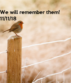 Poster: We will remember them!