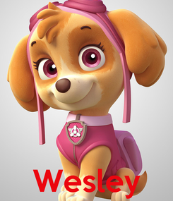 Poster:     Wesley