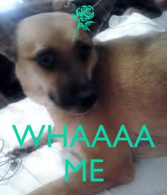 Poster:    WHAAAA ME