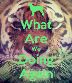 Poster: What Are We Doing Again