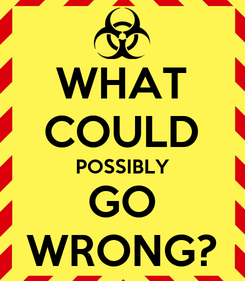 Poster: WHAT COULD POSSIBLY GO WRONG?