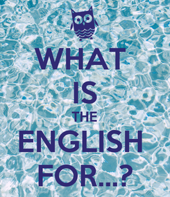 Poster: WHAT  IS THE ENGLISH  FOR...?