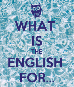 Poster: WHAT  IS THE ENGLISH  FOR...