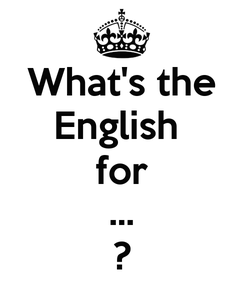 Poster: What's the English  for ... ?