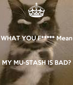Poster: WHAT YOU F***** Mean    MY MU-STASH IS BAD?