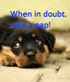 Poster: When in doubt, take a nap!