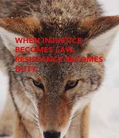 Poster: WHEN INJUSTICE