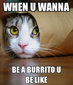 Poster: WHEN U WANNA BE A BURRITO U BE LIKE