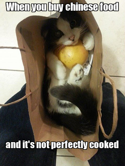 Poster: When you buy chinese food         and it's not perfectly cooked