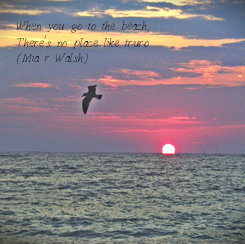 Poster: When you go to the beach, There's no place like truro (Mia r Walsh)