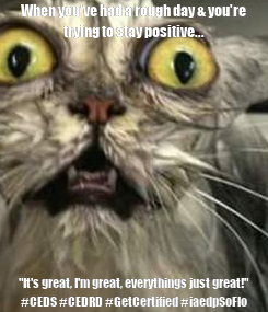 """Poster: When you've had a rough day & you're trying to stay positive... """"It's great, I'm great, everythings just great!"""" #CEDS #CEDRD #GetCertified #iaedpSoFlo"""