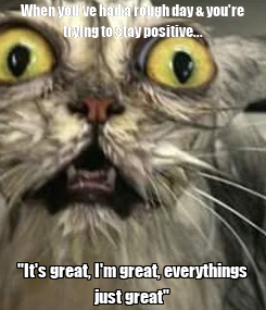 """Poster: When you've had a rough day & you're trying to stay positive... """"It's great, I'm great, everythings just great"""""""