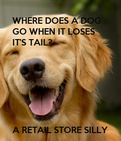 Poster: WHERE DOES A DOG 